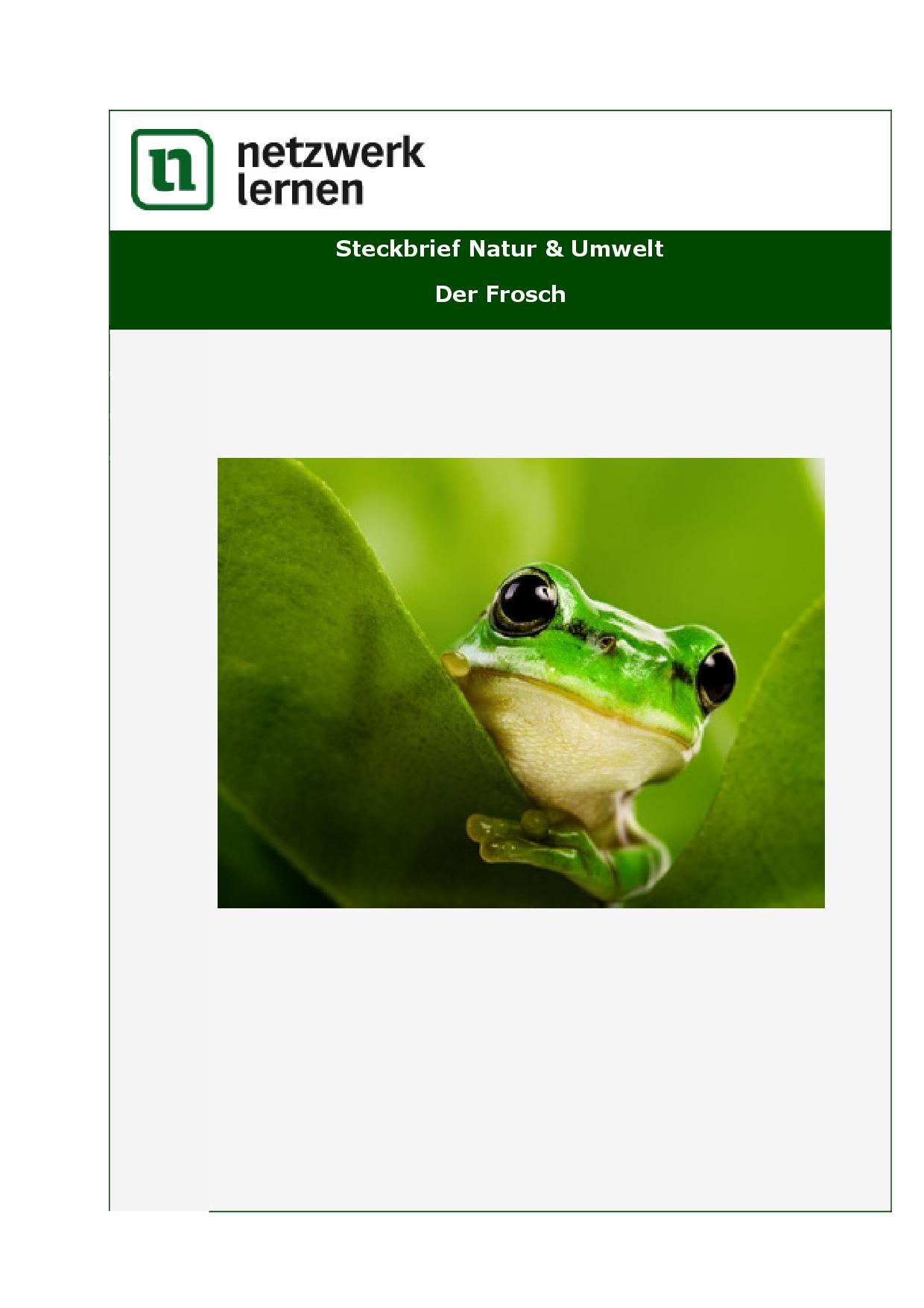 Netzwerk Lernen Steckbrief Natur & Umwelt   Der Frosch